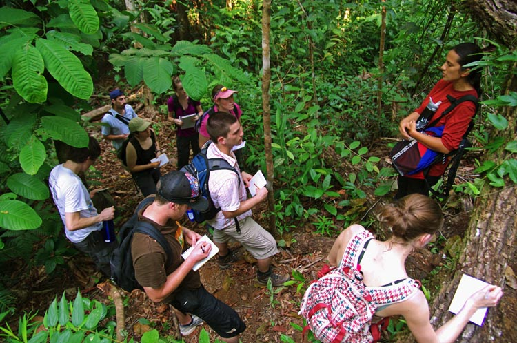 Field class in Costa Rica cloud forest